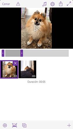 App Adobe edición vídeo