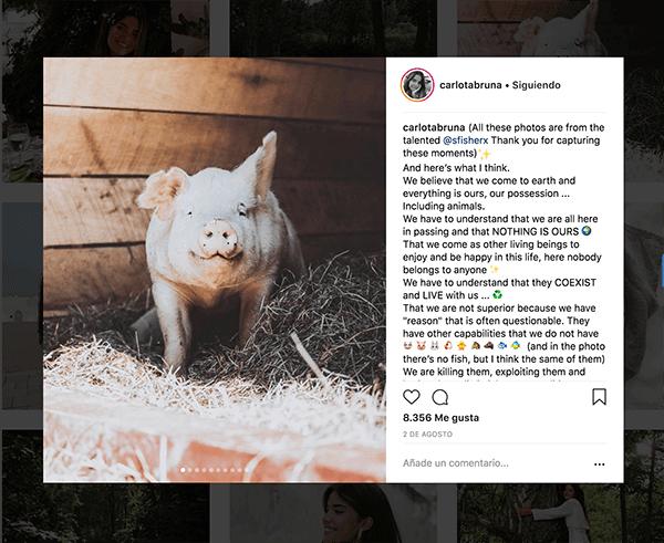 como hacerse popular en instagram
